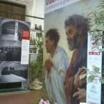 Bizzozero di Varese - L'allestimento