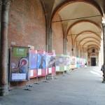 Milano, S. Ambrogio - L'allestimento